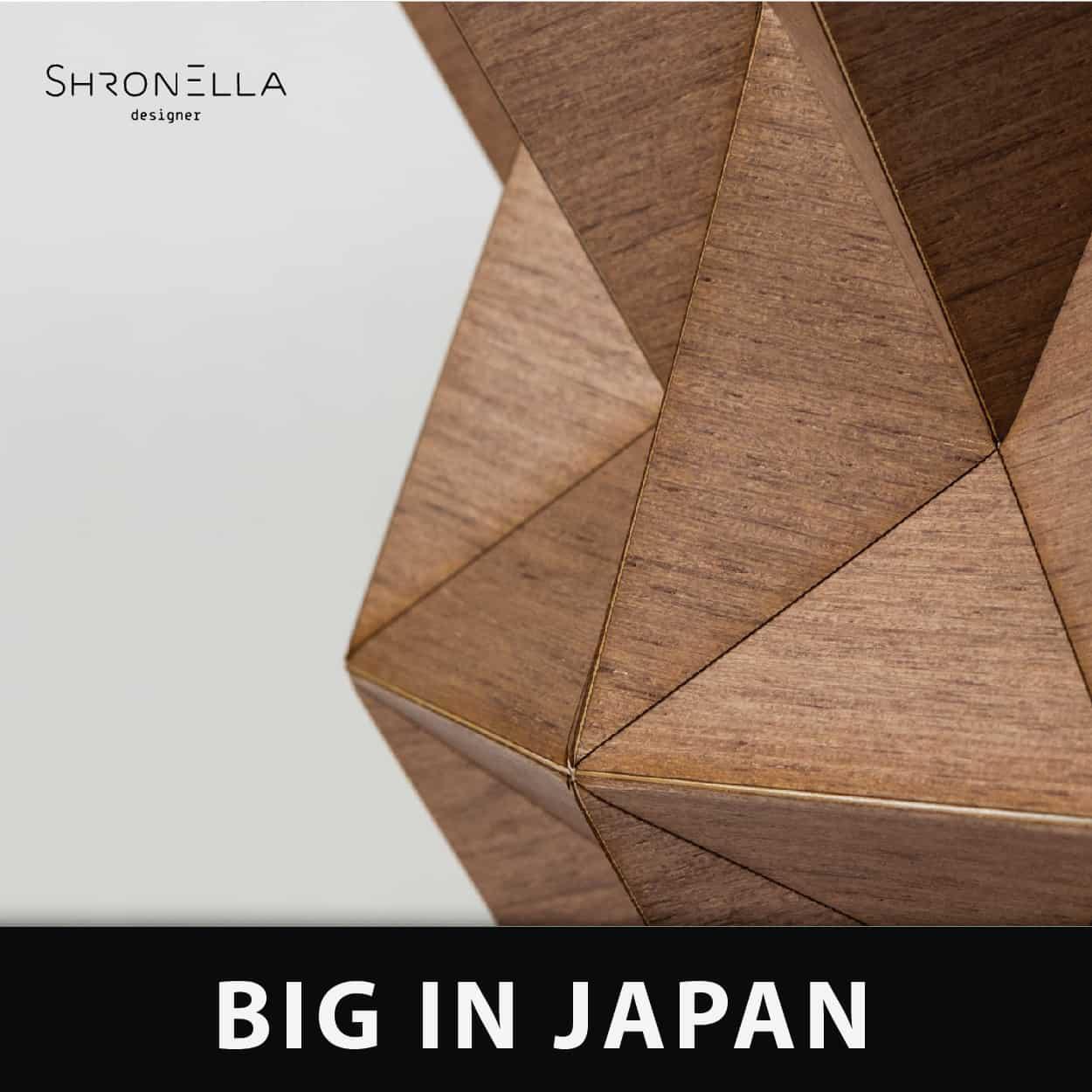 פרסום לסדנת Big in japan עם צילום מתוך עבודת אוריגמי של אילן גריבי